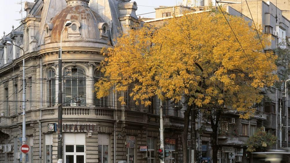 Возможность побывать в Румынии. Летняя Школа