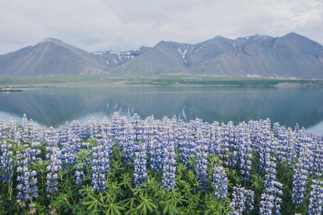 garmonija-i-sila-prirody-puteshestvie-v-islandiju-46