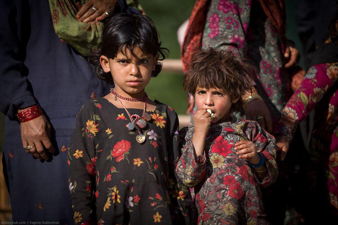 himalaya_india_2014_0031