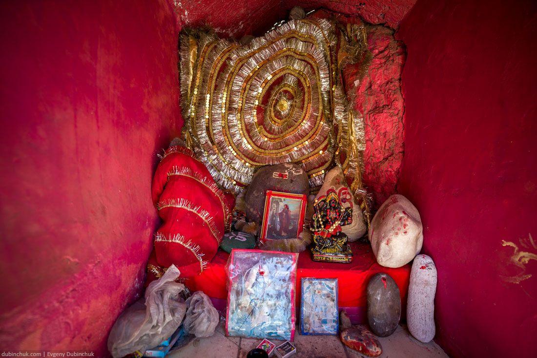 himalaya_india_2014_0210