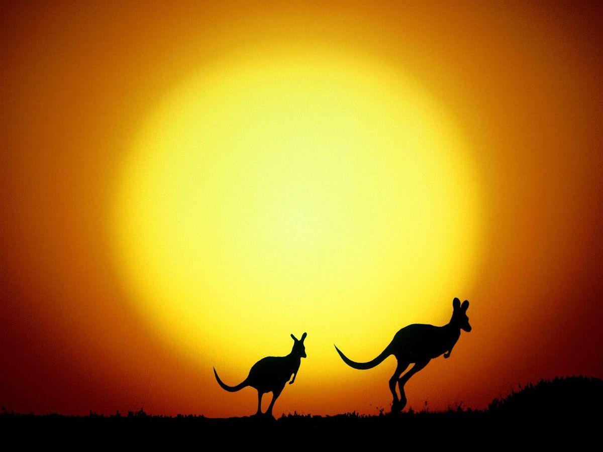 7 главных причин, почему стоит отказаться от поездки в Австралию