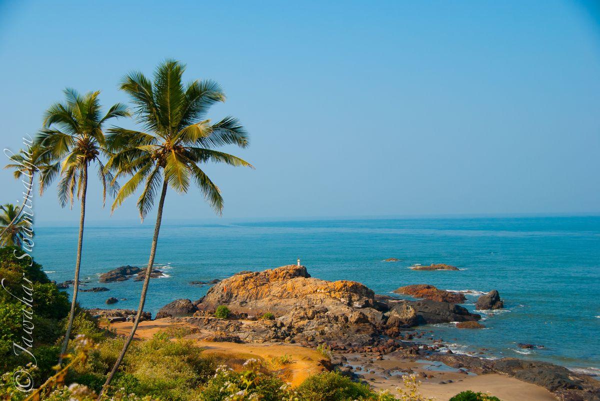 проектирование гоа пляжи картинка роман