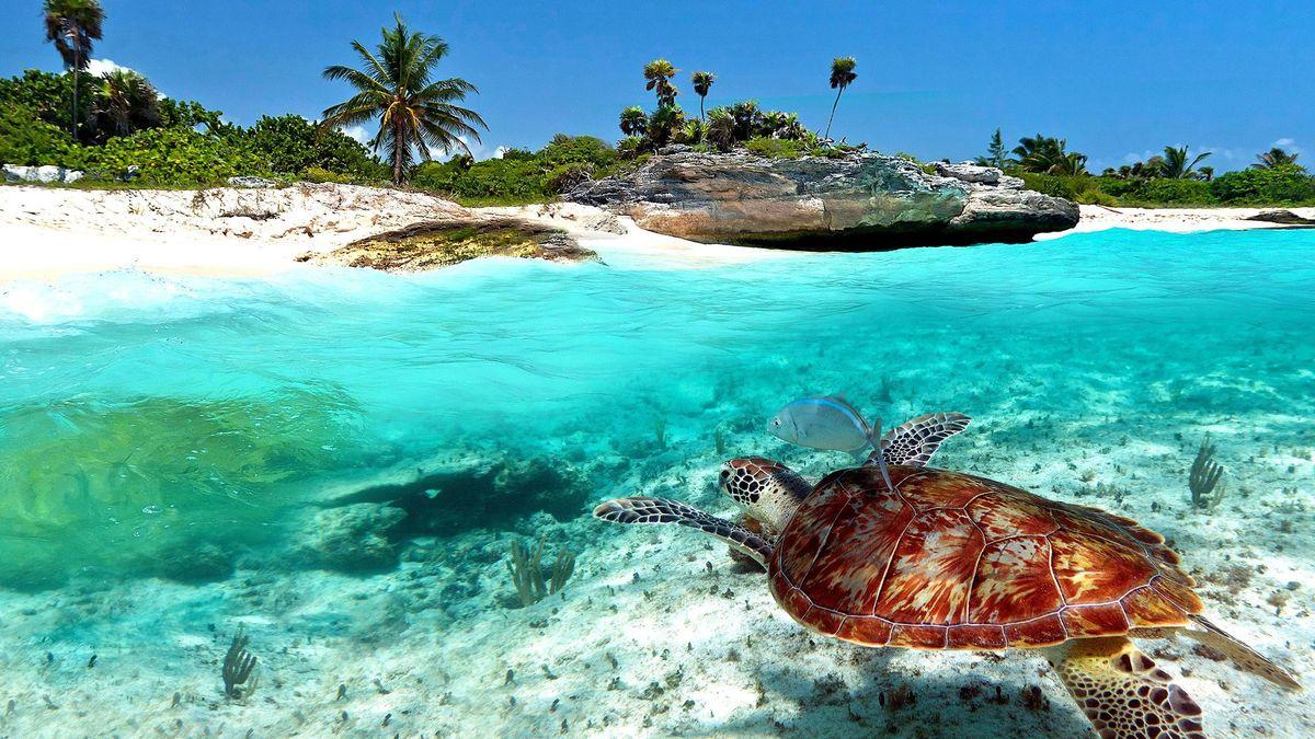 Топ-5 недорогих морских курортов с отличным климатом