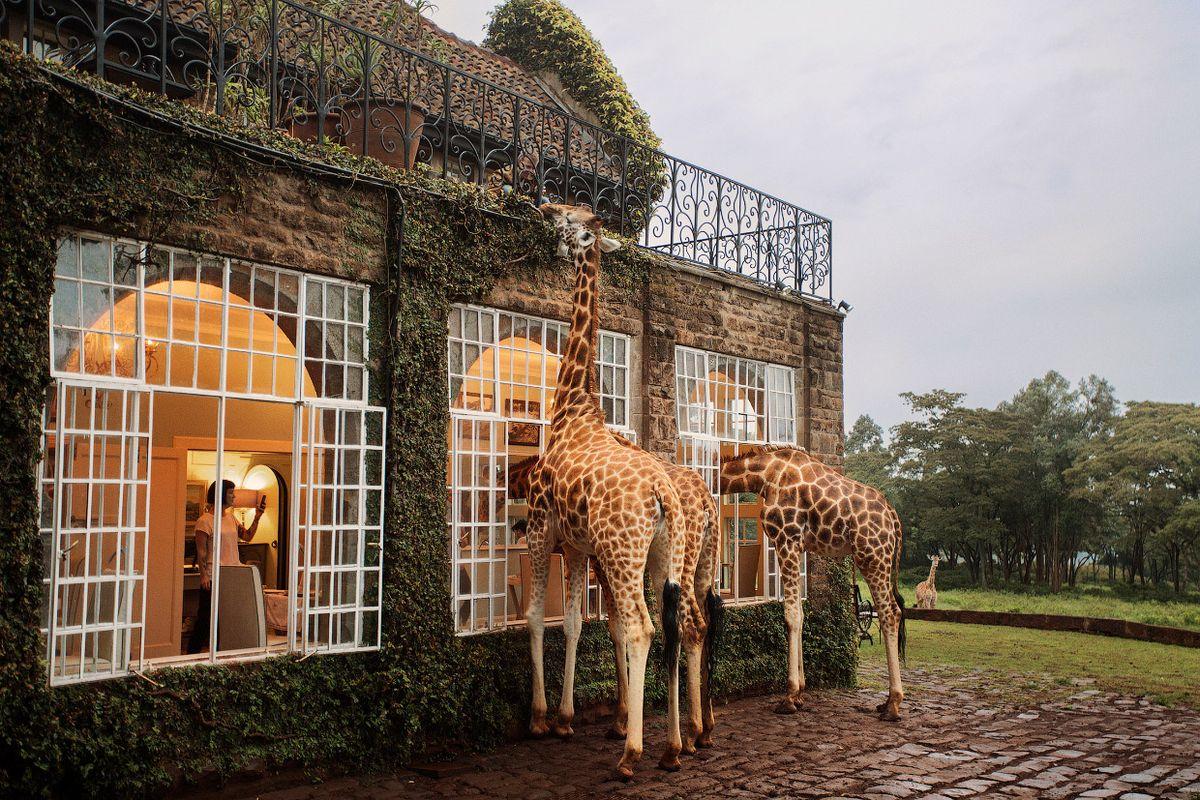 Отели, поражающие воображение: топ-5 самых запоминающихся мест