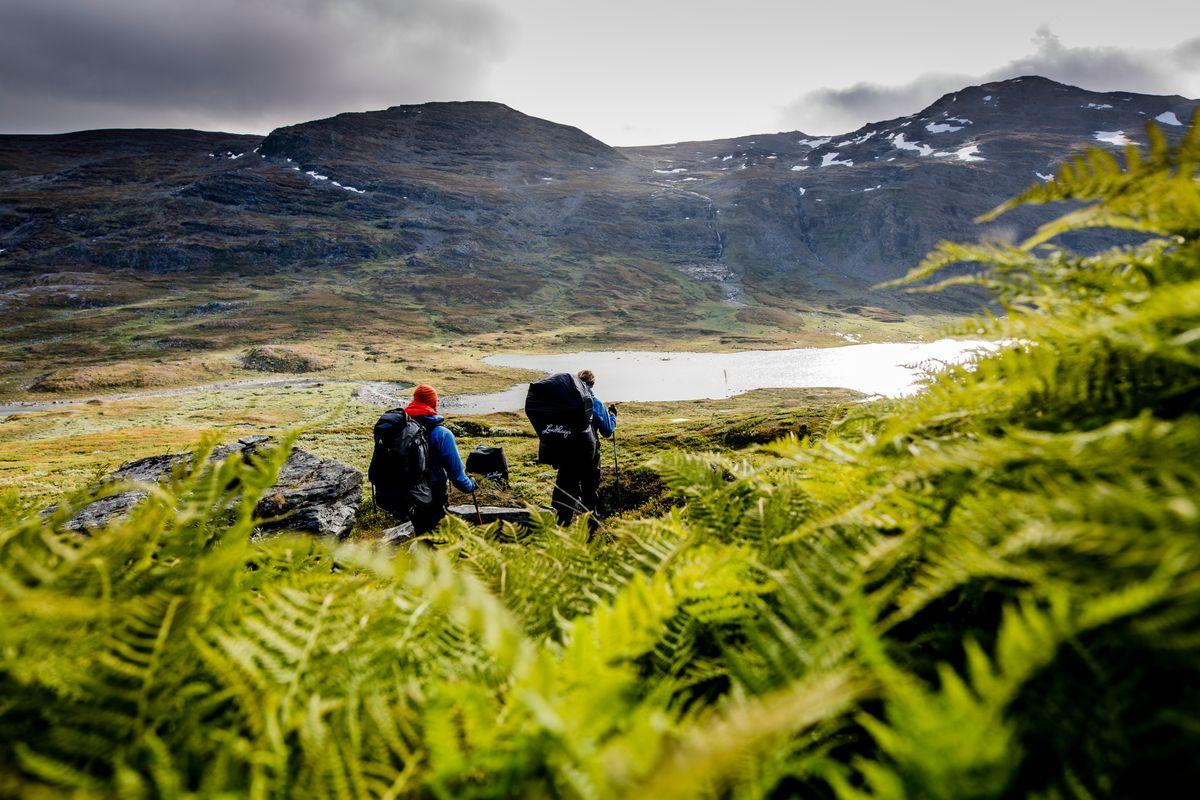 Трепет и любовь: топ-5 стран, где бережно относятся к природе