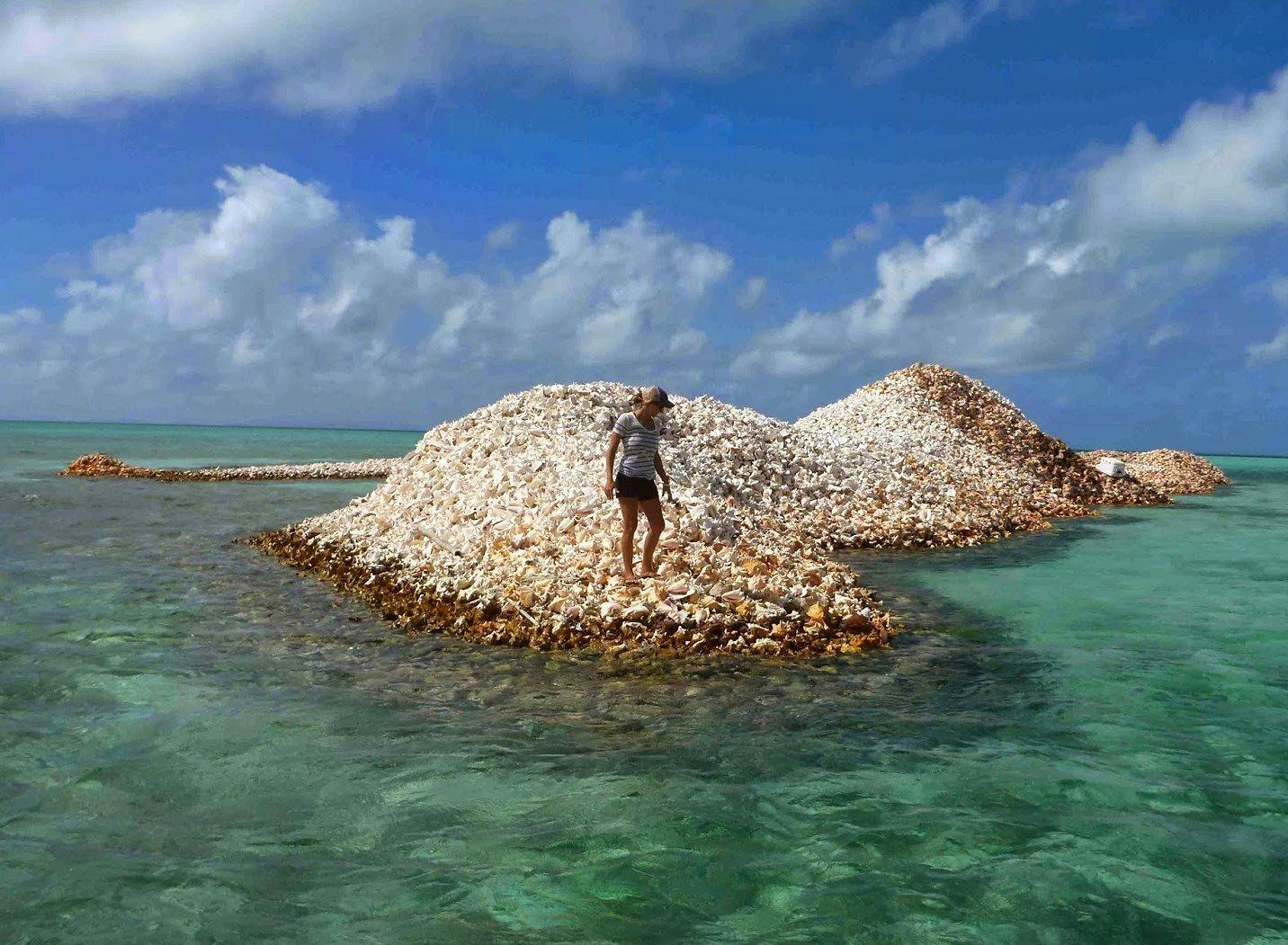 Чем удивит туриста природный остров на Карибах?