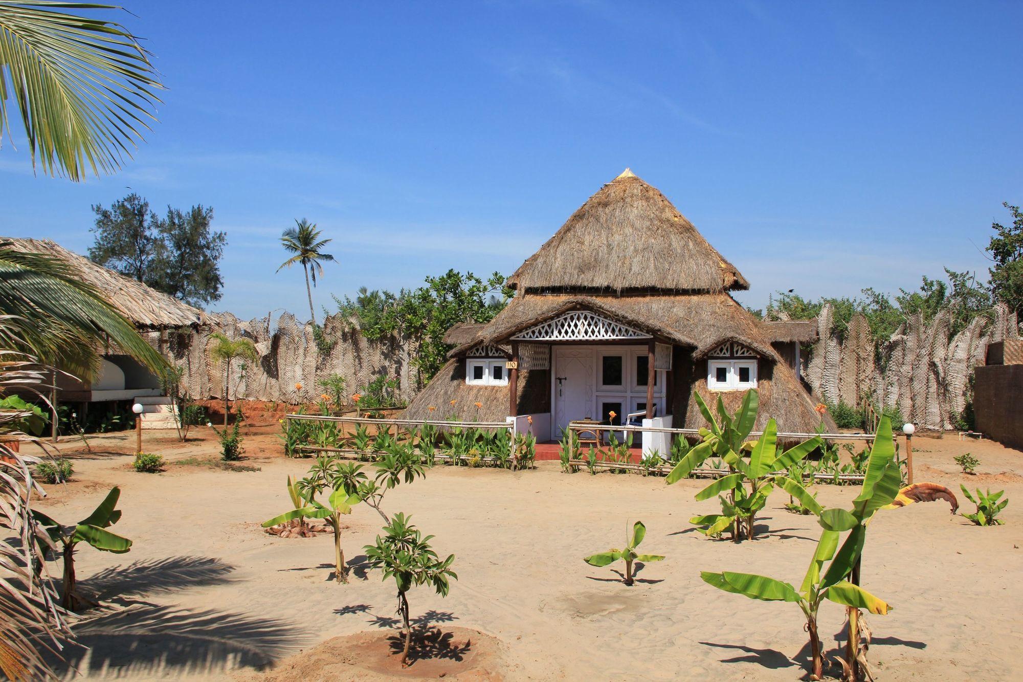 Когда и как лучше всего «отлавливать» дешевые путевки в Индию