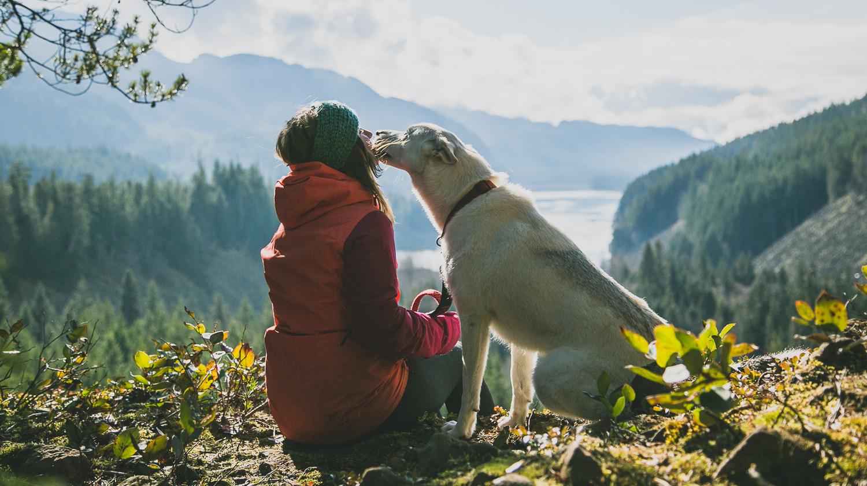 Пять причин в пользу того, чтобы взять с собой в осенний поход собаку
