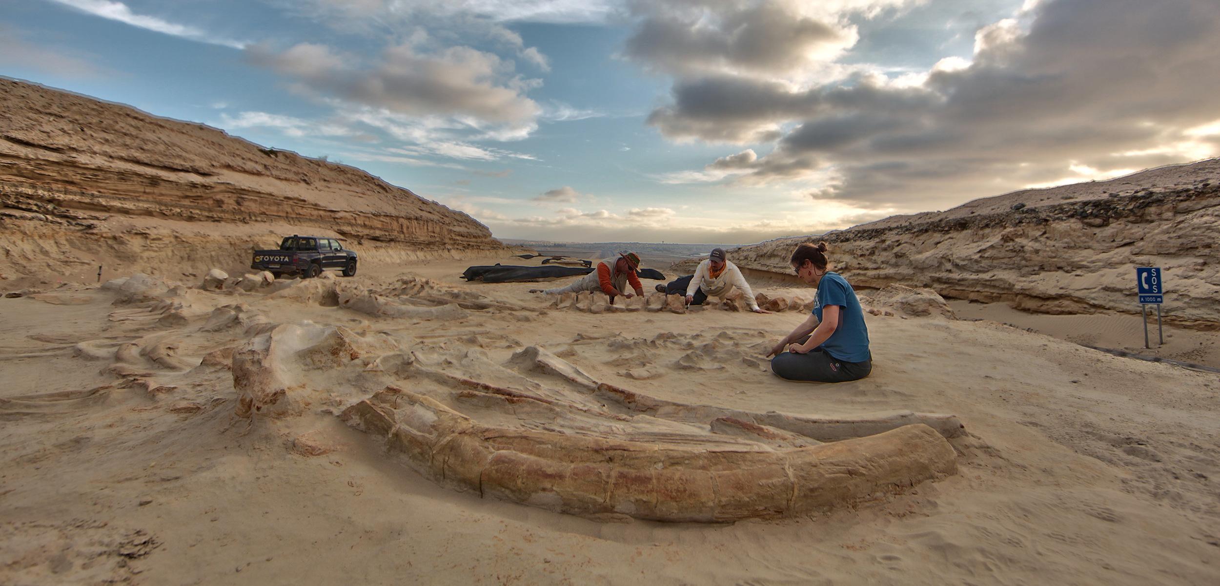 Какие непредсказуемые находки могут таить в себе пустыни мира